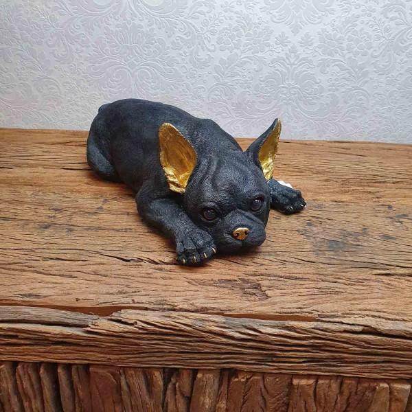 Bulldogge verträumt