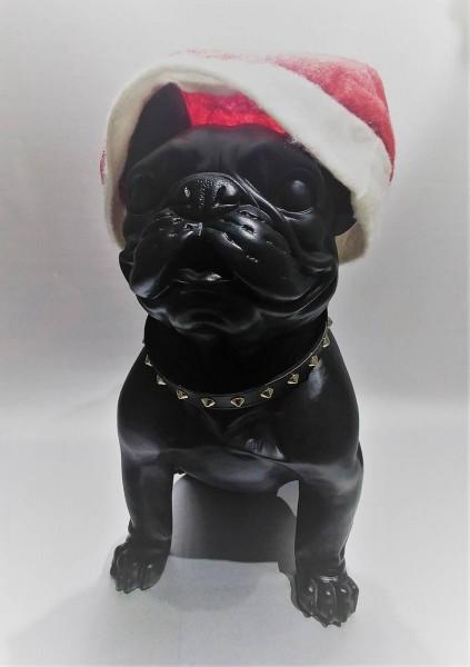 Bulldogge Black